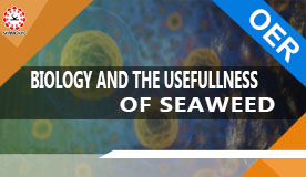 BIOLOGY AND THE USEFULLNESS OF SEAWEED SEA-1007
